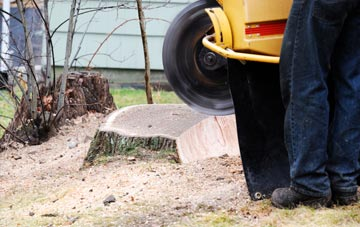 rated High Wycombe tree stump removal companies