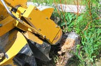 High Wycombe tree stump grinding services